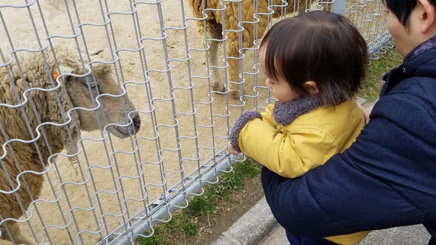 【天王寺動物園】へ行ってきました!お目当ての動物が居ない!?大阪市内在住の小中学生は無料!!